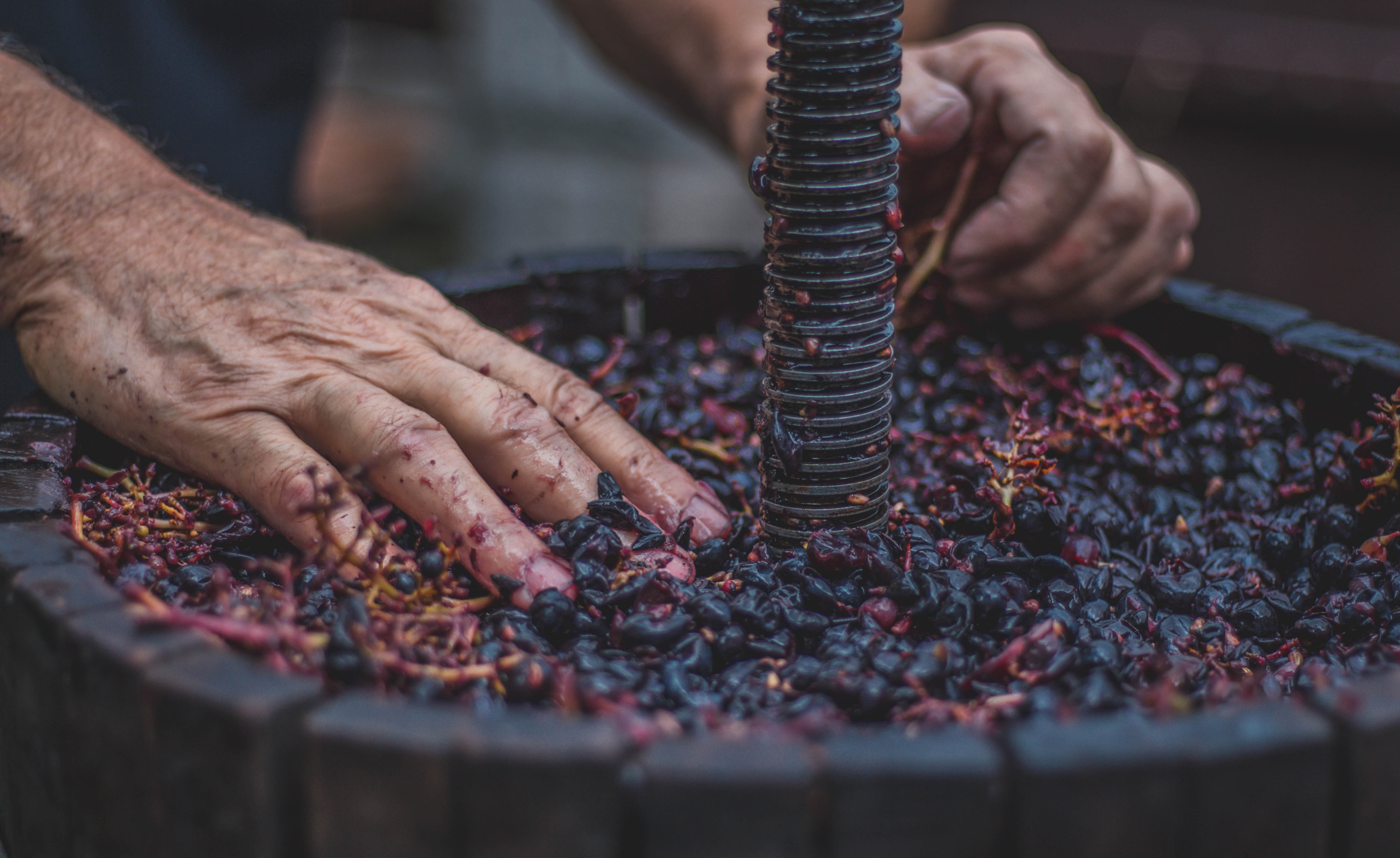 Lichte Rode Wijn : Vegan wijn om world vegan month mee af te sluiten foodini