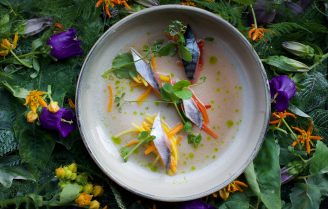 Foodini Hotspot: Nomads