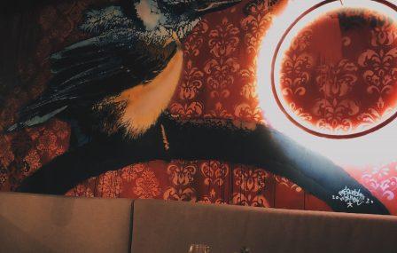 Hotspot: Bar BAUT – het beste van 7 jaar BAUT