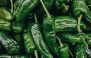 Gezonde snack: gegrilde pepers